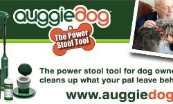 Auggie Dog
