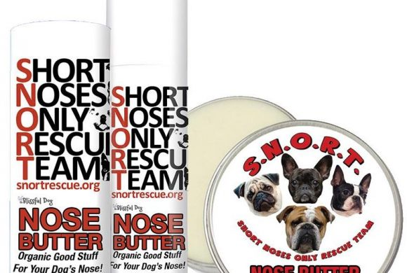 Blissful Dog S.N.O.R.T. Nose Butter
