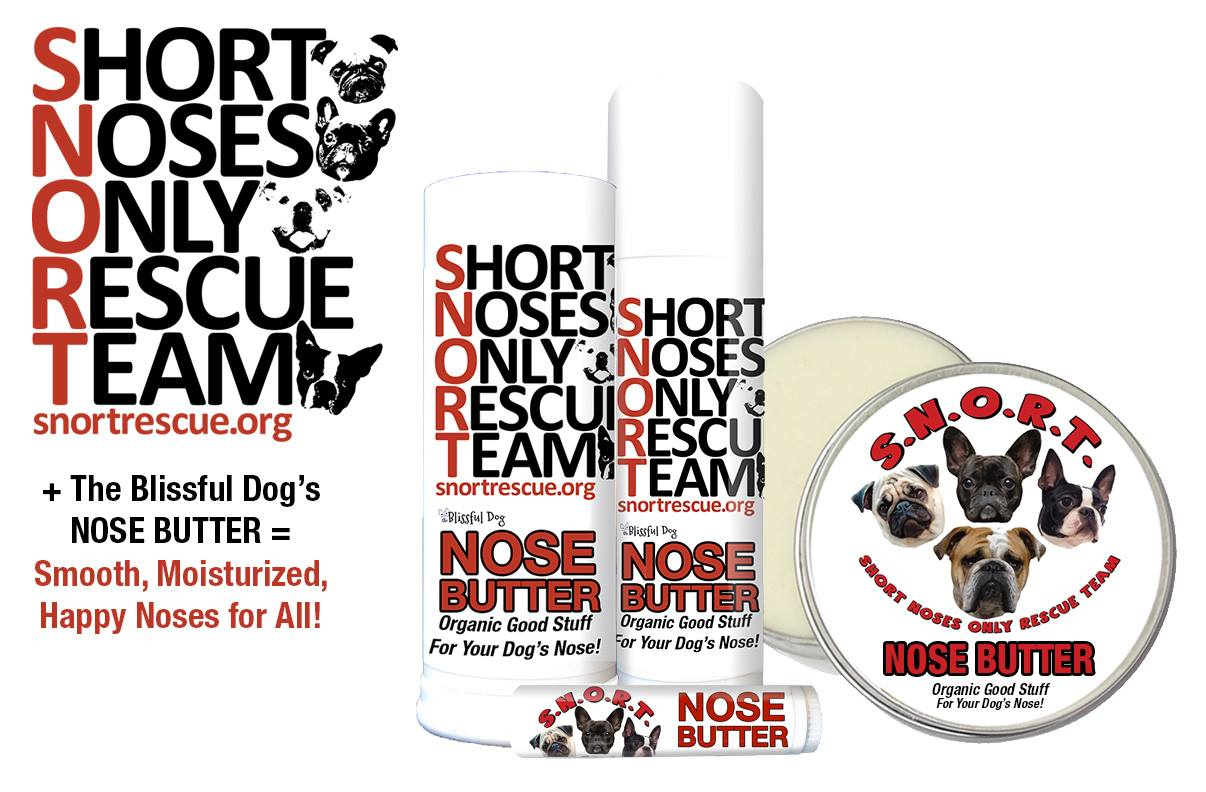 SNORT Rescue | Short Noses Only Rescue Team