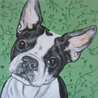 Ashley Reid Pet Portraits